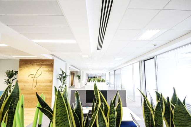 Prothena Biosciences Office Design