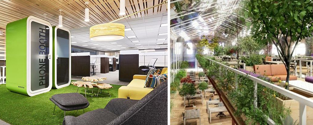 Is Biophilic Design The Key To A Healthy Workplace